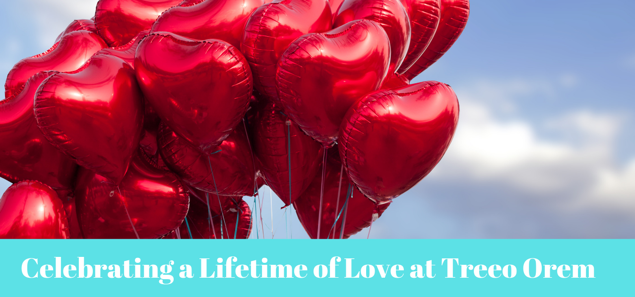 Celebrating a Lifetime of Love at Treeo Orem