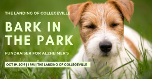Bark in the Park at The Landing of Collegeville