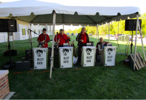 Alley Cats Band