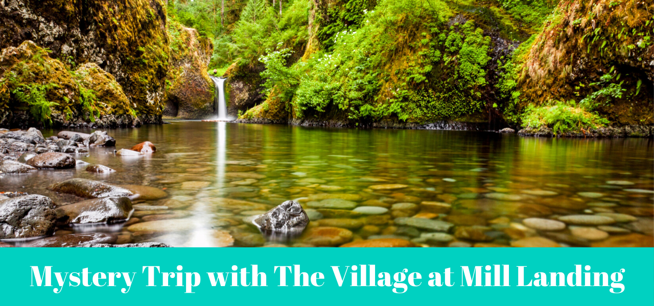 Mystery Trip with The Village at Mill Landing