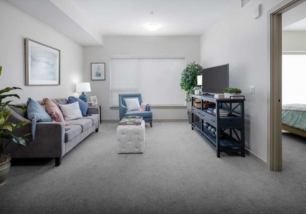 Apartment Living Room at The Ackerly at Sherwood